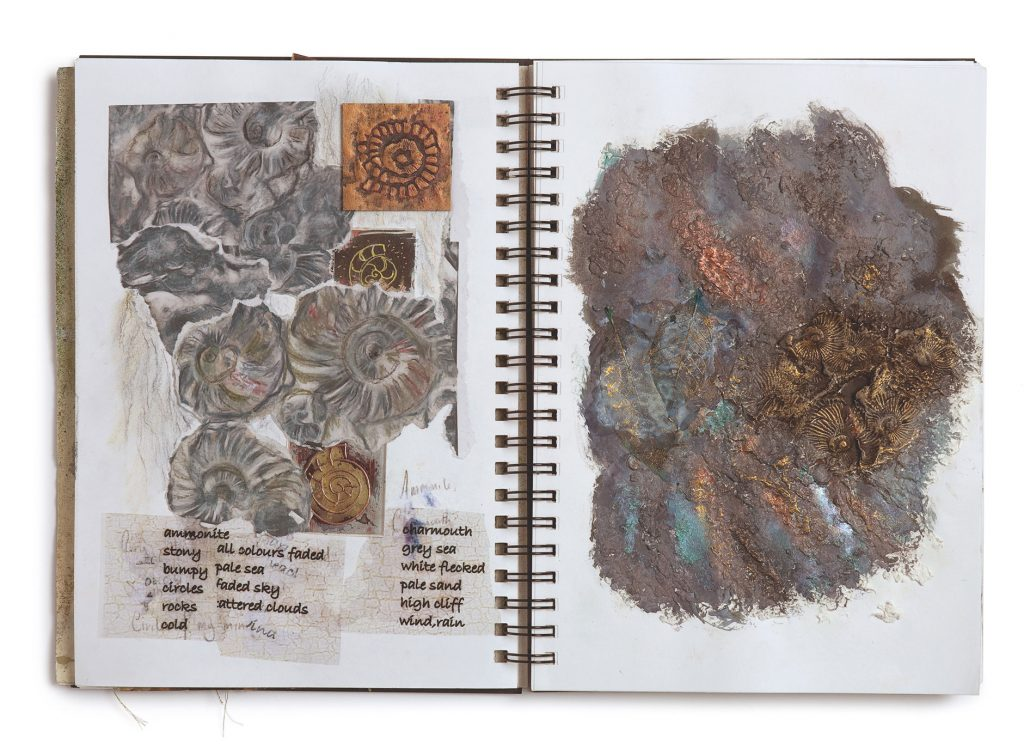Sketchbook piece a study of fossils by Maggie Grey