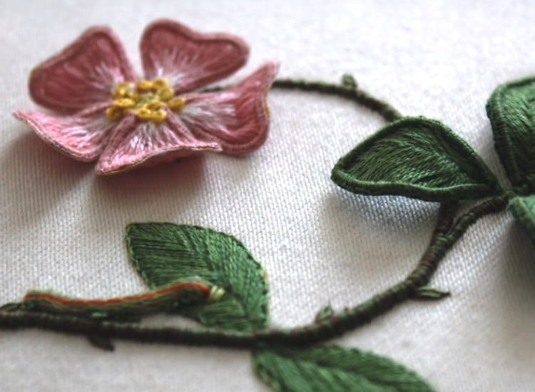 Beginner's Stumpwork Embroidery Course.