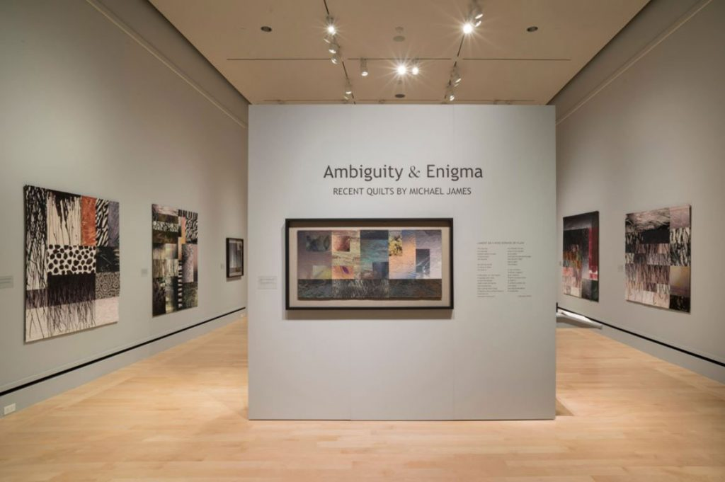 Ambiguity & Enigma by Michael James, 2015