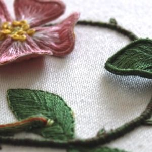 Raised Embroidery Stumpwork project