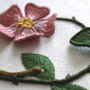 Beginner's Stumpwork Raised embroidery course