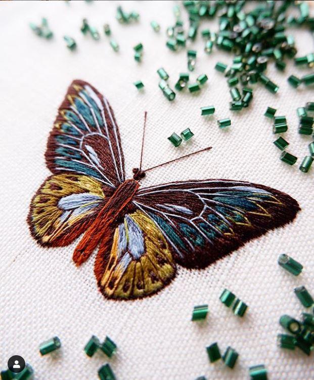 Divya Nandani raised embroidered butterfly