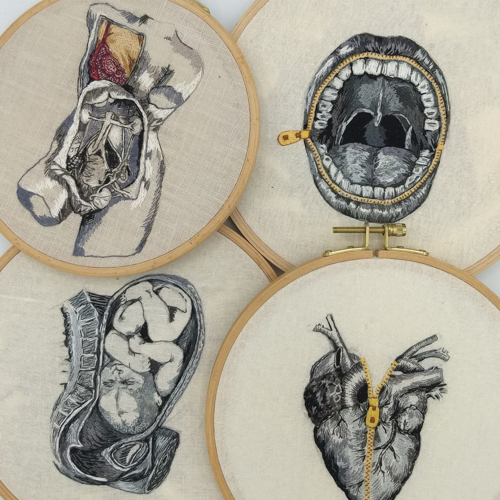A collection of embroidered anatomy hoop art by Julie Campbell