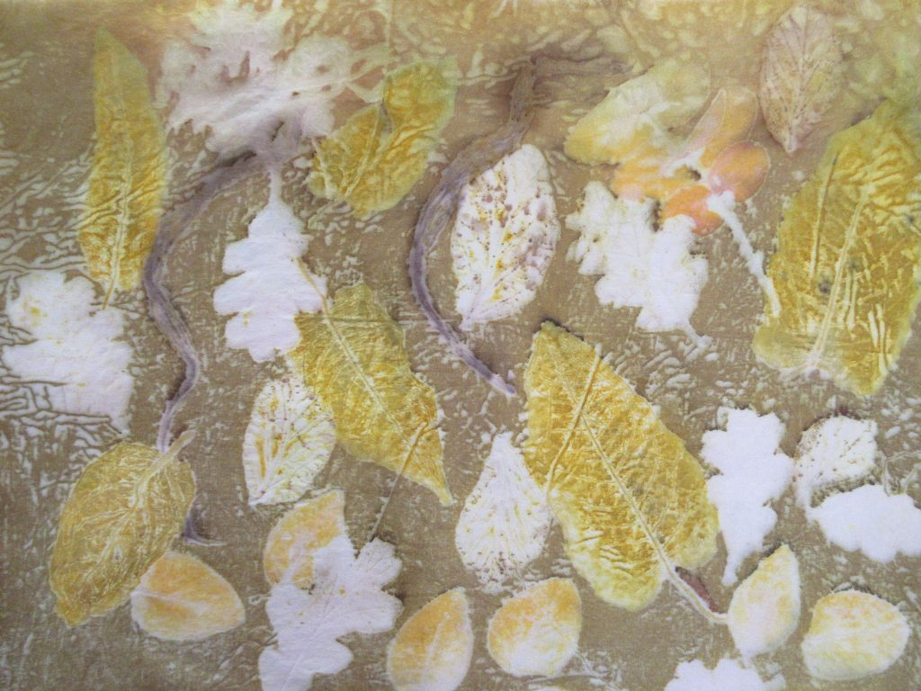 Silk dyed with onion skin